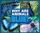 Why Are Animals Blue?, Melissa Stewart, 0766032515