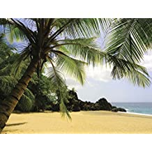 J.P. London MD91012UMBPS Peel and Stick Tropical Beach Oasis Full Wall Mural, 10.5-Feet by 8.5-Feet