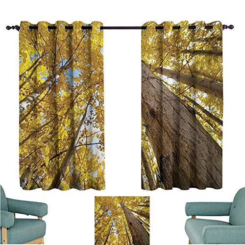 DONEECKL Room Darkening Wide Curtains Nature Image of Up View of Fall Aspen Tree Leaves in Faded Tone Autumn Season Photography Noise Reducing Curtain W55 xL45 Yellow ()