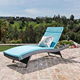 Christopher Knight Home 594 Salem Chaise Outdoor Lounge (Set of 2)
