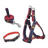 Retractable Dog Leash, 360° Tangle-Free, Heavy