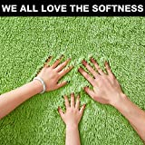 PAGISOFE Lime Green Fluffy Shag Area Rugs for