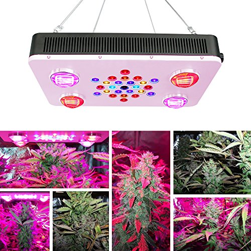 Grow Light for Plants Full Spectrum LED Growing Lamp for Marijuana 12 Band Dimmable COB BloomBeast C525 525w Hydroponic Greenhouse Lighting for Seedling/Veg/Flower/Bloom