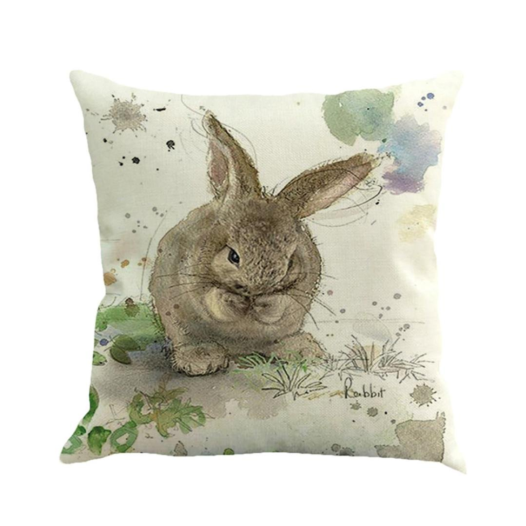 Decorative Throw Pillow Covers, Happy Easter Retro Cute Rabbit Home Decor Cushion Covers 18 x 18 (D)