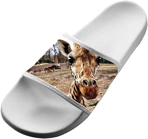 Giraffe Summer Slides Slippers Shoes