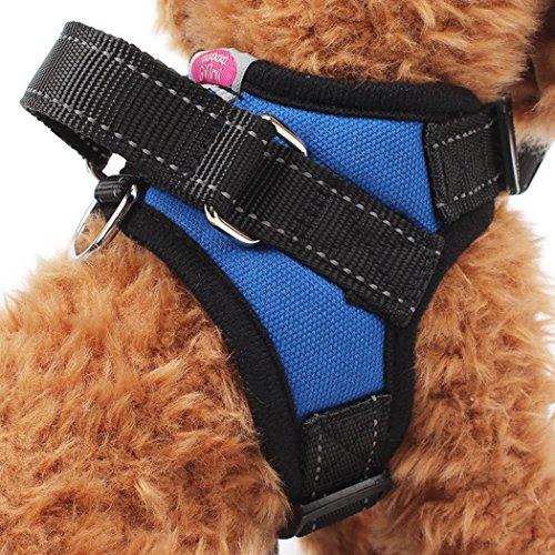 top dog harness - 2