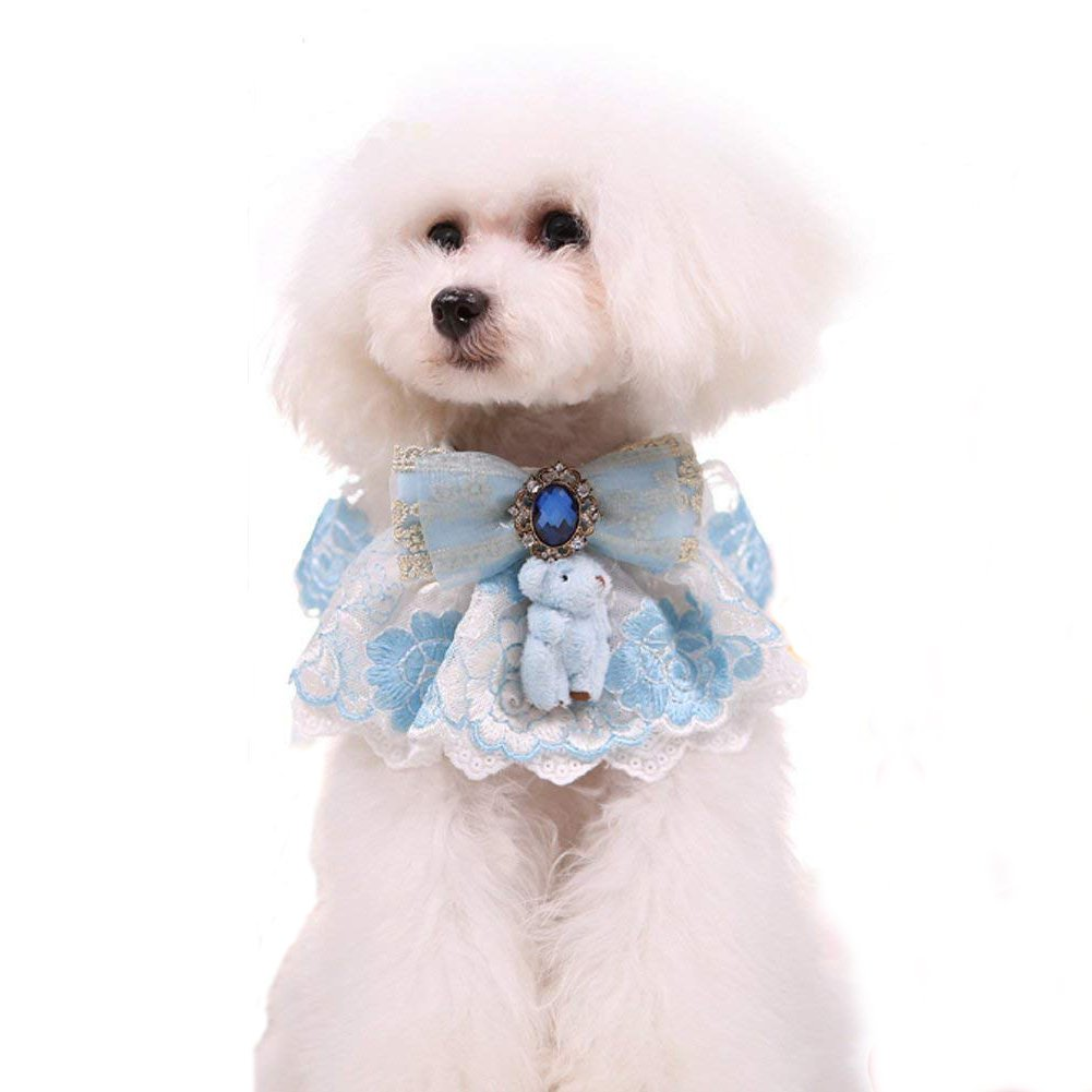 PetFavorites Girl Dog Collar, Lace Bowtie Cat Collar with Embroidered Flower & Rhinestone, Kitten Puppy Teacup Chihuahua Yorkie Clothes Wedding Holiday Costume Outfits Accessories (Blue, Size M)