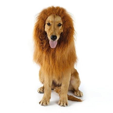 Amazon.com: Peluca de león para perro, disfraz para perros ...