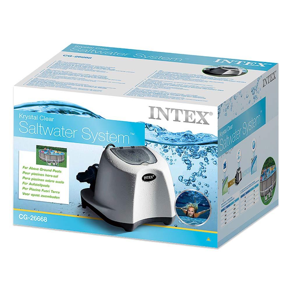 Intex 26668