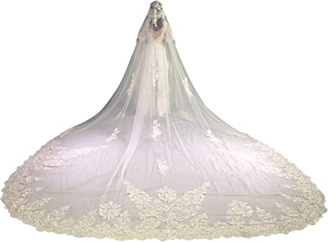 Faiokaver Wedding Veils Cathedral Length 1 Tier Floral Lace Appliques with Comb