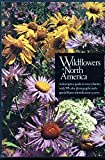 img - for Wildflowers of North America - A Descriptive Guide in Two Volumes, with 595 Color Photographs and a Special Flower Identification System (Western America/Eastern America) book / textbook / text book