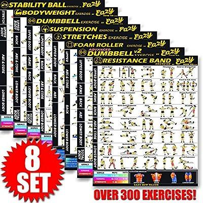 Eazy How To póster para ejercicios con cables de suspensión, 51 x 73 cm, tonificación, musculación, alta resistencia, premium, 8 Pack, Estándar: Amazon.es: Juguetes y juegos