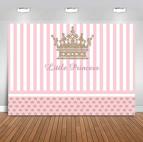 Amazon.com: Sensfun - Fondo para fotografía de princesas ...