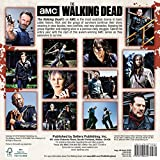 AMC The Walking Dead 2019 Mini Calendar, 7 x 7, (CS-0472)