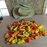 #1318 WORLD'S SWEETEST MINI RAINBOW SWEET BELL PEPPERS MIX