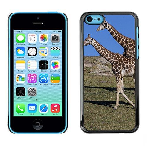 Premio Sottile Slim Cassa Custodia Case Cover Shell // F00020722 Couple de girafes // Apple iPhone 5C
