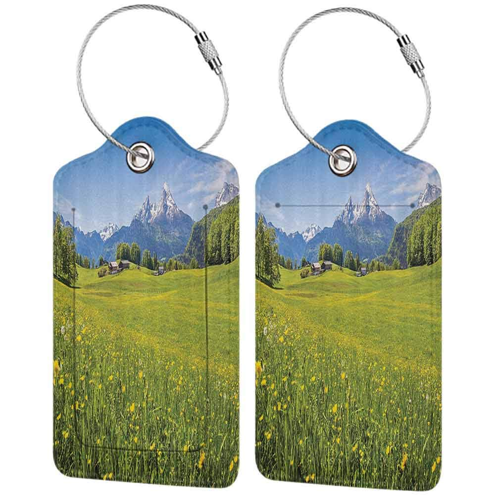 Small luggage tag Nature Landscape Decor Collection Photo of Alps with Fresh Meadows and Blooming Flower Snowy Mountain Nature Home Quickly find the suitcase Green Blue W2.7 x L4.6