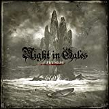 Night In Gales: Five Scars (Audio CD)