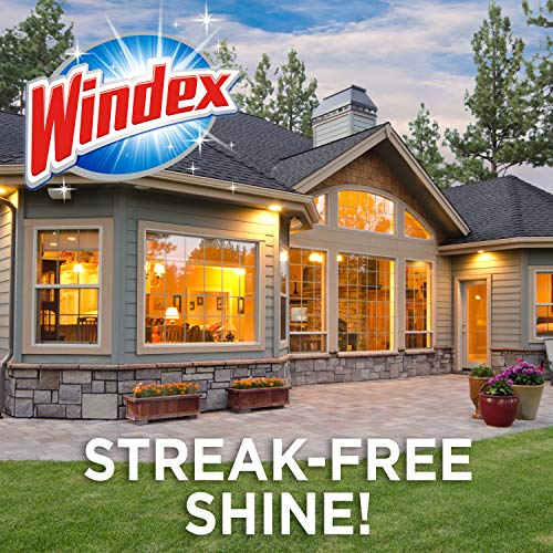 Windex Outdoor Window, Glass, & Patio Cleaner With Hose