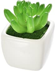 Vafany Artificial Mini Succulent Cactus Fake Plants Assorted Decorative Faux Succulent in Square White Ceramic Planters for Home Décor