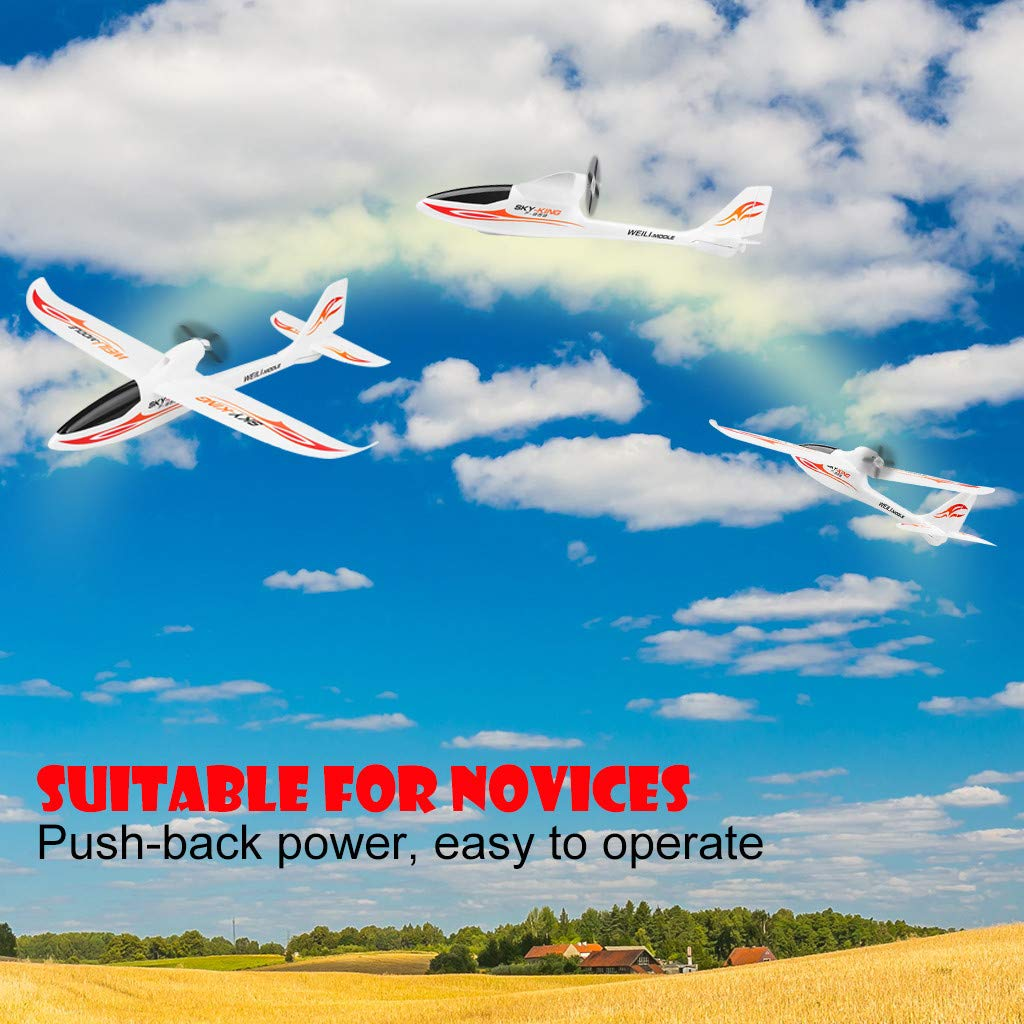 Hisoul F959 RC Airplane 2.4G 3CH Radio Control Remote Control Backward Pusher Glider RTF for Beginner Best Gift - Shipped from US (♥ White) by Hisoul (Image #3)