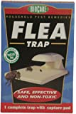 Springstar S102 Flea Trap (2 Pack)