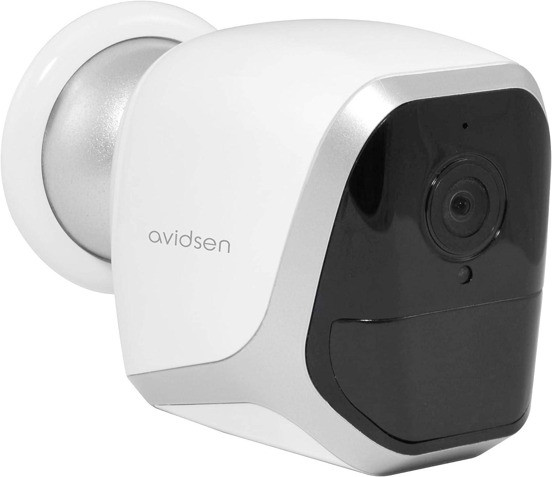 Avidsen Ip Überwachungskamera Für Den Innen Oder Außenbereich Nachtsicht Wlan Kabellos Baumarkt