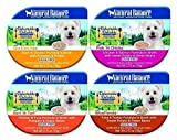 Natural Balance Delectable Delights 2.75-oz tubs Grain-Free Wet Dog Food - Case of 16 with 4 Flavors - Fish 'N Chicks - Duck'en-itas - Surf 'N Turf - and Woof'erole
