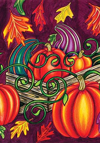 (Toland Home Garden Fall Gourd Colorful Autumn Pumpkin Leaves House Flag )