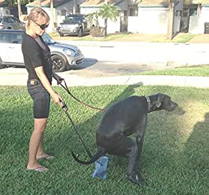 Amazon.com : Pooper Scooper For Dogs - Free Bags - The