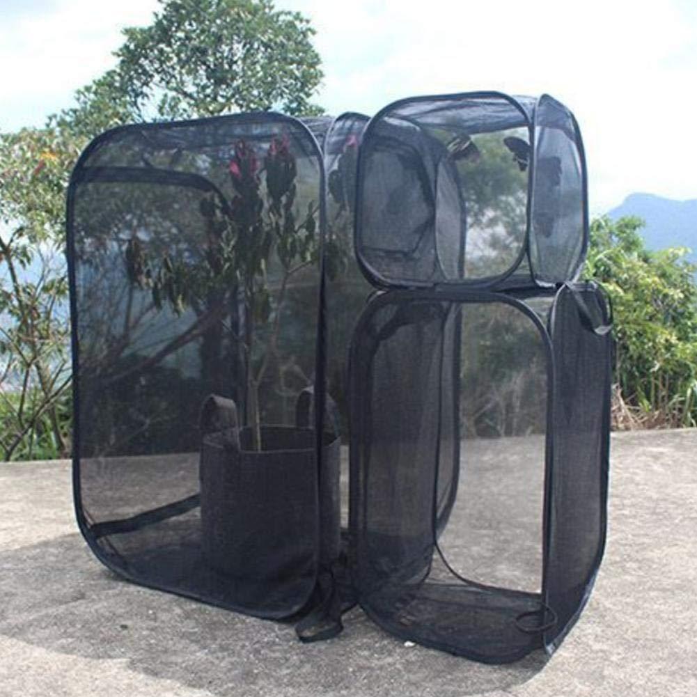 Insecto y mariposa H/ábitat Jaula Terrario Incubadora de malla plegable Caja de almacenamiento Pa/ño Ventilar Insecto