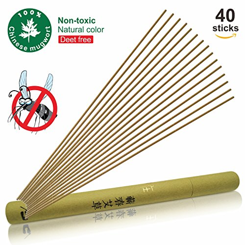 40 Free Sticks (GKCI Mosquito Sticks Wormwood Natural Insect Repellent Incense Sticks non toxic Eco friendly Mosquito Repellent Sticks Deet-Free (Pack of 40))