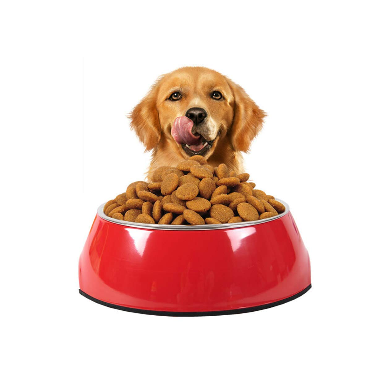 Red M Red M Guyuexuan Cat Bowl, Cat Food Bowl, Dog Food Bowl, Pet Supplies, Ceramic Bowl, Cat Feeder, Dog Food Bowl, Best Gift (color   Red, Size   M)
