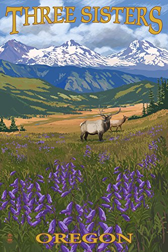 Three Sisters, Oregon - Elk and Flowers (9x12 Art Print, Wall Decor Travel Poster)