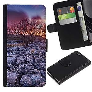 // PHONE CASE GIFT // Moda Estuche Funda de Cuero Billetera Tarjeta de crédito dinero bolsa Cubierta de proteccion Caso Apple Iphone 5 / 5S / Desert Tree Sunset /
