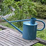 Calunce 5L Iron Rustic Retro Textured Gardening Tools Long Spout Watering Can (blue)