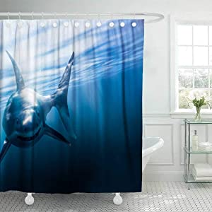 Douecish 72X78 Shower Curtain, Shower Curtain Great White Shark Swimming Underwater with Light Rays Mixed Media Cool Shower Curtain with Hooks Waterproof Eco-Friendly Long Shower Curtain for Bathroom