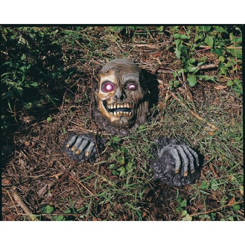 Rubies Costume Co Full Skull Outdoor Prop Multicoloured One (Zombie Ruby)