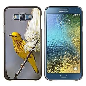 TECHCASE---Cubierta de la caja de protección para la piel dura ** Samsung Galaxy E7 E700 ** --primavera amarilla flores de la naturaleza en flor