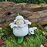 Cheap Fairy Garden Miniature – May Lily Of The Valley Baby