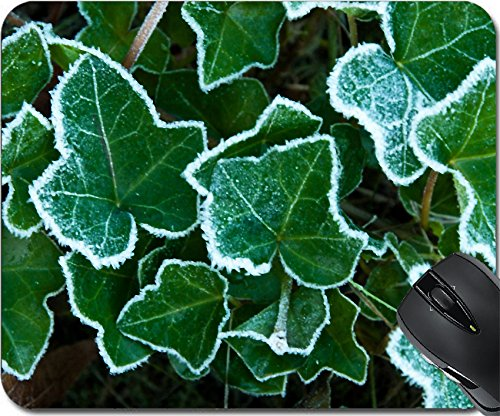 MSD Mousepad Mouse Pads/Mat design 35127209 Frosted leaves of english ivy