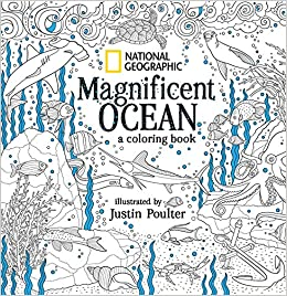 Amazon.com: National Geographic Magnificent Ocean: A ...