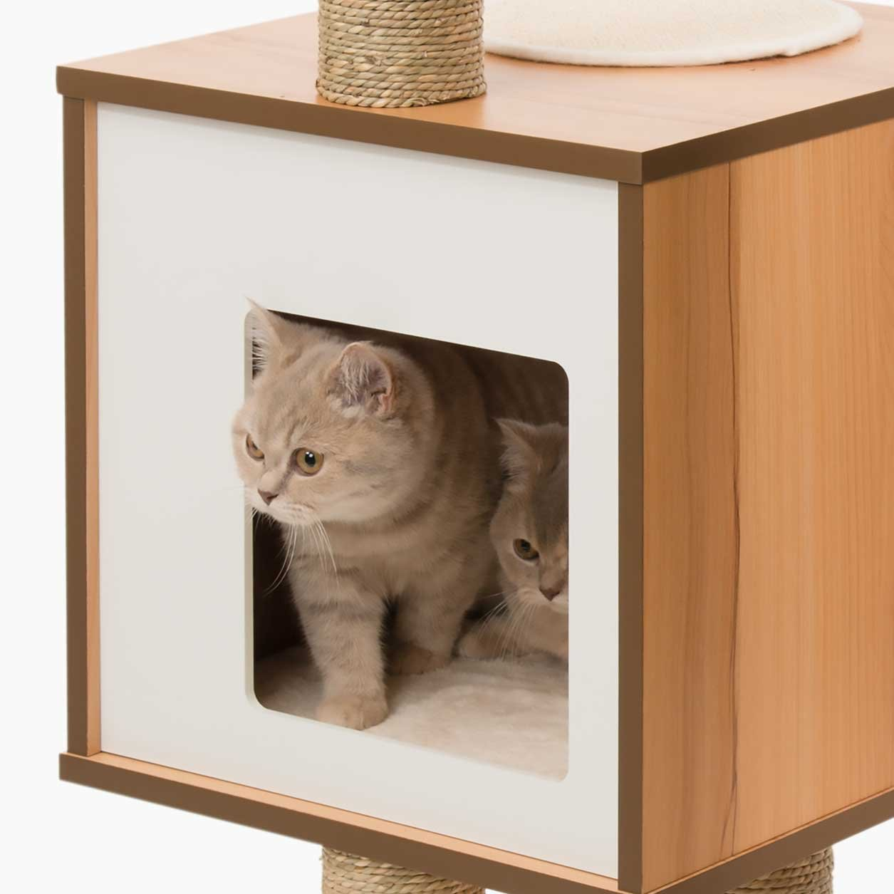 Vesper Mueble Rascador para Gatos V-High Base, Color Blanco: Amazon.es: Productos para mascotas