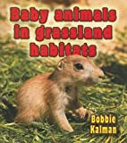 Baby Animals in Grassland Habitats, Bobbie Kalman, 0778777405