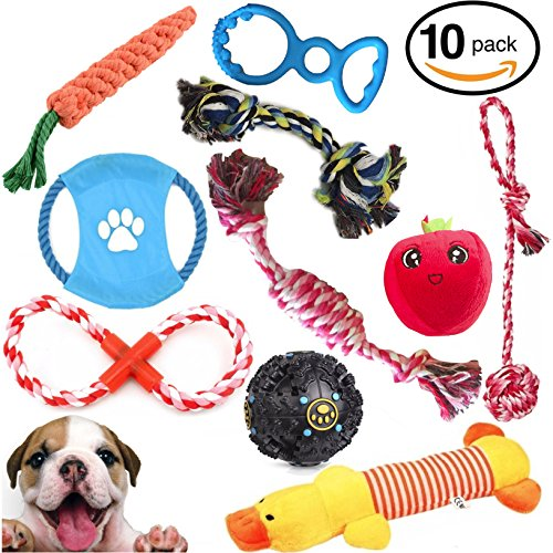 Mystic Soul Dog Chewable Toys Set - Gift Pack of 10 Resistance Durable Toy Playtime For Agressive Chewers - Small and Medium Dogs
