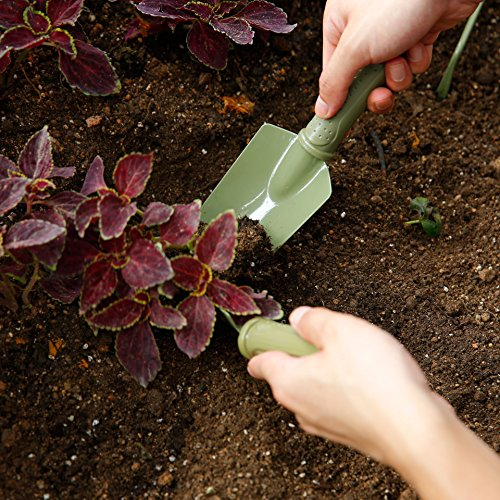 Worth Garden Hand Transplanter with Carbon Steel Head and PE Handle