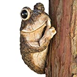 Bits and Pieces - Keep Quiet Frog Tree Peeker - Durable Polyresin Animal Tree-Hugger Sculpture - Lawn and Garden Outdoor Décor Statue