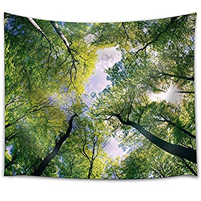 Looking Up The Trees in The Forest, Premium Product, Stunning Visual