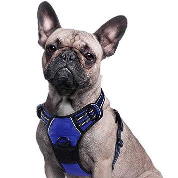 Eagloo Arnés para perro sin tirones, arnés para mascotas con 2 ...