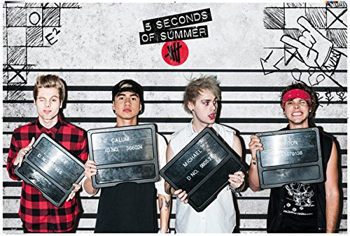 Seconds Summer Music Poster Lineup product image